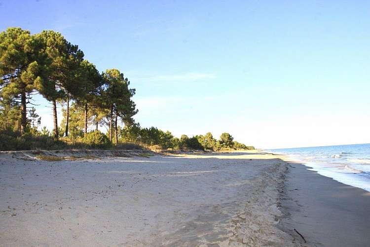 Corsica8