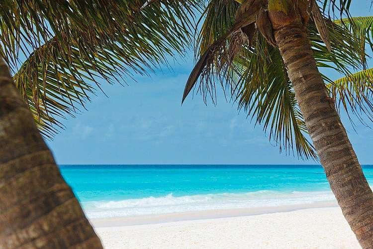 Alla scoperta delle spiagge Rosa delle fantastiche Isole Bermuda