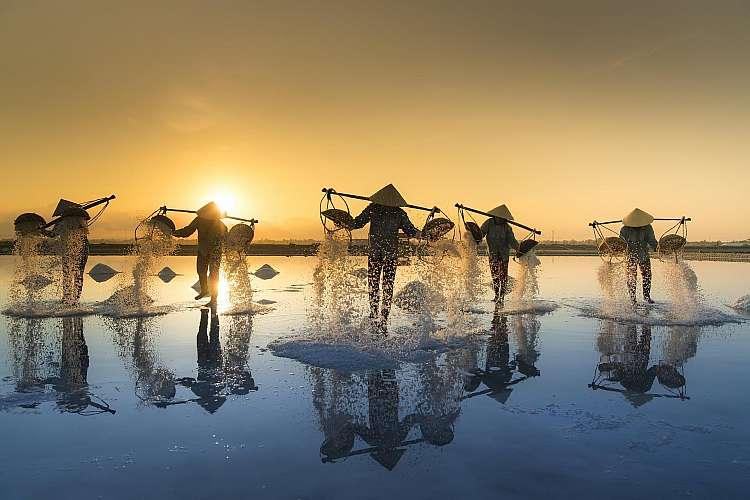 pesca vietnamita