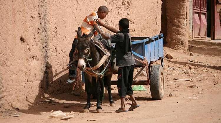 Tour Privato nel Sud del Marocco da Marrakech al Deserto in 4x4