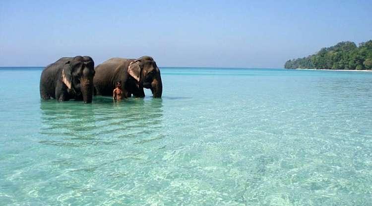 India: vacanza nelle Isole Andamane e nel Golfo del Bengala