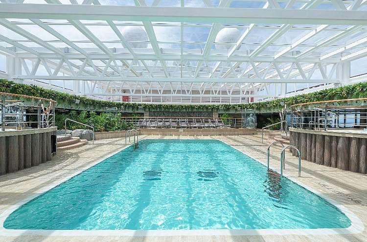 piscina jungle