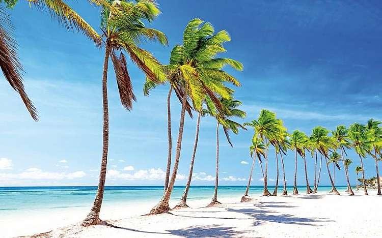 spaigge caraibi