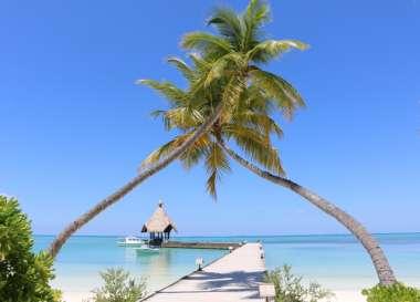 Canareef Resort Maldives, vacanza alle Maldive con sconto fino all'81%