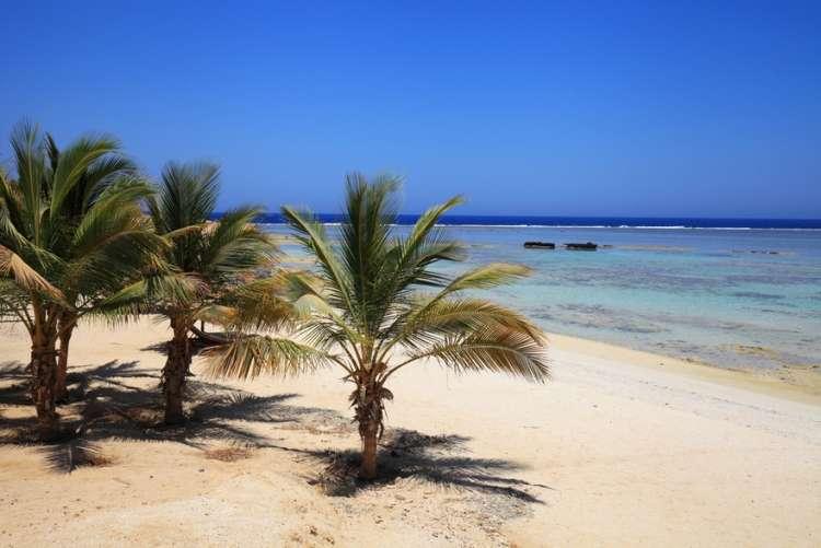 Vola in Egitto: le migliori offerte per il Mar Rosso a partire da 488 euro