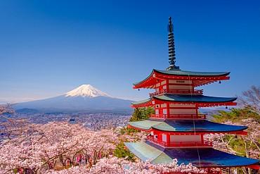 Viaggio in Giappone, hanami tour a 3580 euro solo colazione