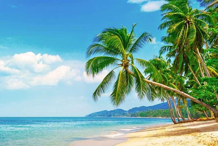 Crociera ai Caraibi, Cuba e Antille a 1.000 euro