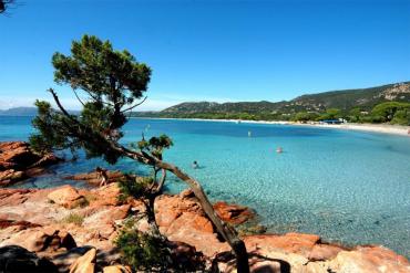 Estate in Corsica da 406 euro solo soggiorno
