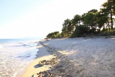 Viaggio in Corsica da soli 273€ solo soggiorno