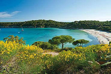 Vacanza all'Isola d'Elba da 68€