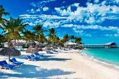 Natura Esuberante: tra le meraviglie della Florida e del Messico da 1020 euro