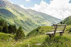 Dalla malga al rifugio: vivi la Valle Camonica tra trekking e gusto!