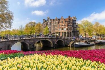Offerte voli Amsterdam: con TravelFool GO parti da soli 119 euro!