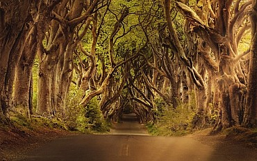 Un viaggio emozionante in  Irlanda in auto Lungo la Wild Atlantic Way