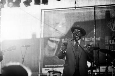 American Music road: Stati Uniti tour guidato sulle tracce del blues..