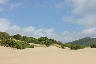In giro nell'assolato sud Sardegna: scopri l'offerta dedicata