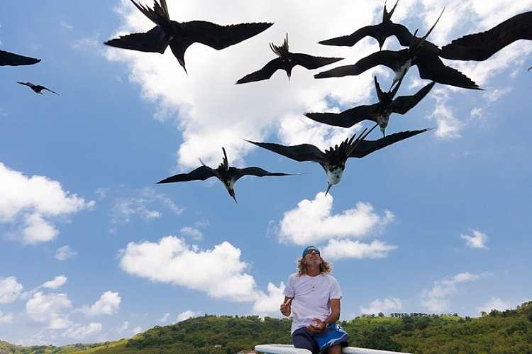 In Brasile l'arcipelago più bello del mondo fra delfini e coralli!