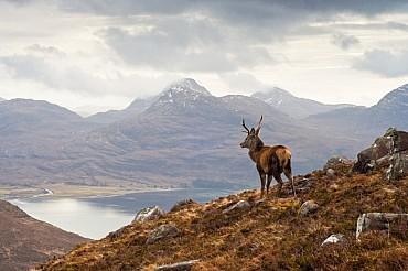 Scozia del Nord :  natura, storia, John Lennon. Emozioni vere