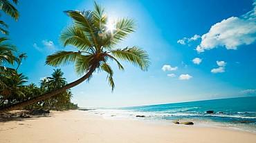 Sri Lanka Classico e Isole Maldive un tour di 12 giorni pensione completa