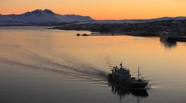 Magia Artica. Aurora boreale, Whalesafari e navigazione dei fiordi mezza pensione