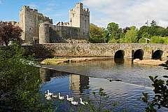 Il Meglio d'Irlanda: Storia e Natura serviti su un tappeto verde