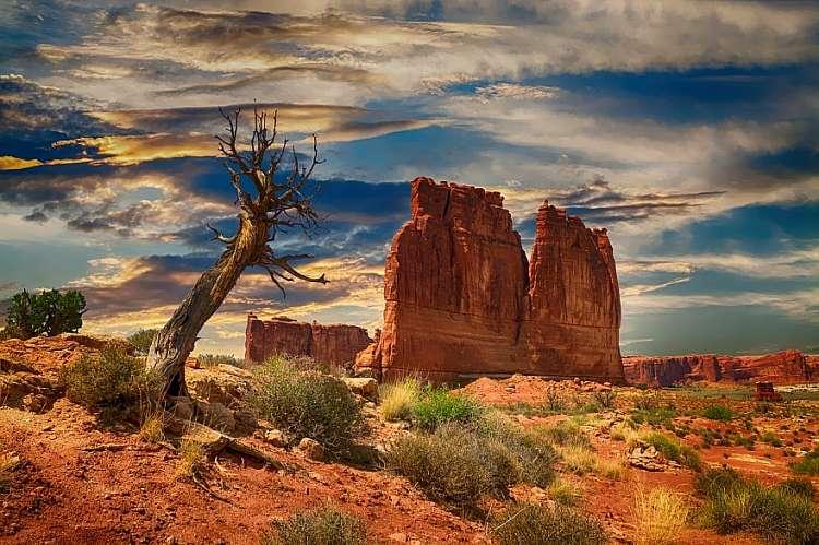 Los Angeles, Las Vegas, San Francisco e i parchi degli Stati Uniti