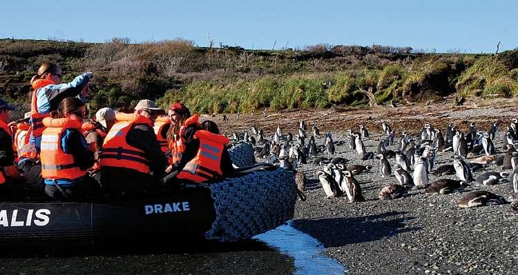 Tour Smart Patagonia.. camminando tra Pinguini e ammirando i Ghiacciai
