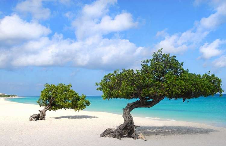 Ai Caraibi tutto l'anno! Soggiorno su 3 isole nelle Antille Olandesi!