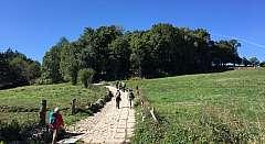 Cammino de Santiago 100 km a piedi.SCONTO SPECIALE.Prenotazione online