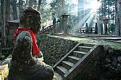 Il viaggio in Giappone tra Spiritualità e suggestioni Zen
