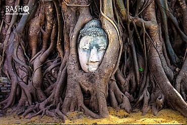 Thailandia: un viaggio alla scoperta della terra dai mille volti