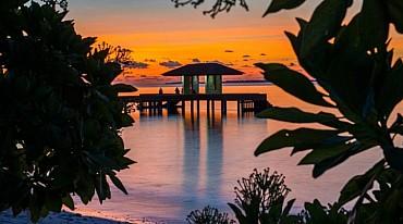 Maldive - The Barefoot Eco Hotel -  Atollo di Haa inverno/estate 2020 pensione completa