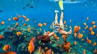 Novità 2020 - Miami e vacanza in catamarano - hotel e voli inclusi
