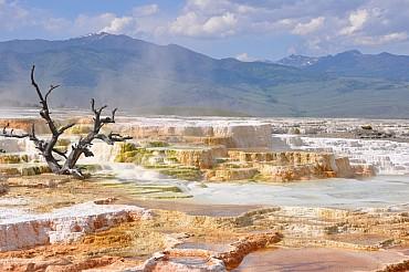 Alla scoperta dei parchi nazionali. Condizioni per prenotazioni online