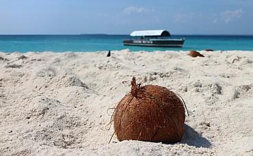 Zanzibar. mare, spiagge e non solo - Volo incluso