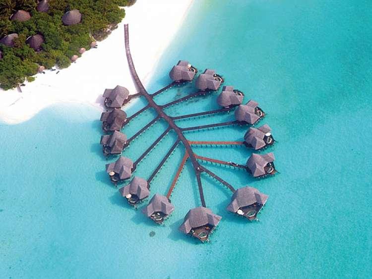 MALDIVE IMPERDIBILE Hotel Coco Palm per una vacanza sempre speciale