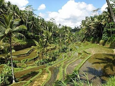 Viaggio combinato Bangkok + Bali 13 giorni e 10 notti in Hotel 4* solo colazione