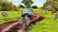 Africa TANZANIA - Arusha: Safari e soggiorno mare a Zanzibar