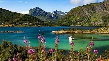 Tour di Gruppo Garantito : da Bodo a Capo Nord e Lofoten da € 1365 pax mezza pensione